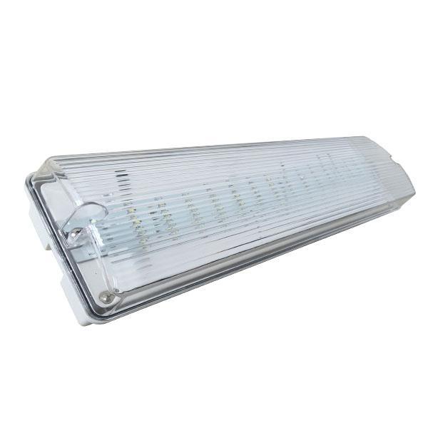 Wall Mounted Emergency Lights : Custom Wall Mounted Waterproof LED Emergency Lamp IP65 Emergency Light