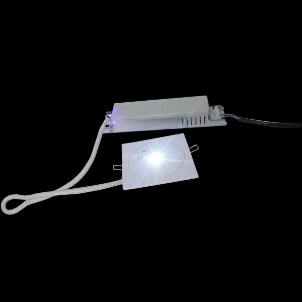 Customized Battery Operated LED Recessed Ceiling Emergency Light 50Hz / 60Hz (EL1X1AN)