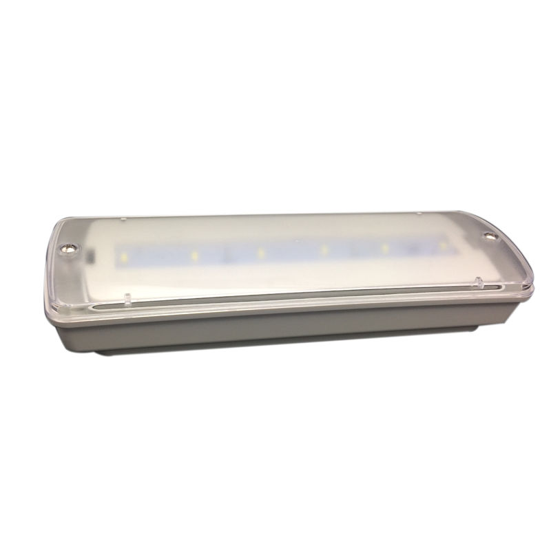 China 3W IP65 Waterproof Rechargeable Battery Backup Led Emergency Light SMD 5730 factory