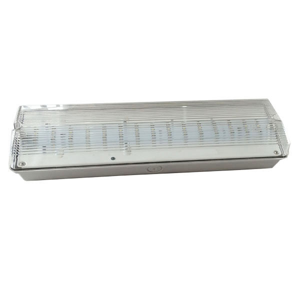 China Battery Operated Self Testing IP65 Waterproof Emergency Light Recahrgeable (EL030AN) factory